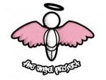pink-wings-300x227
